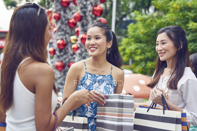 Young Attractive Asian Women At Christmas Shopping Girls Chat Stock Photo 212422058