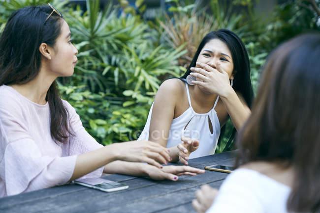 Bei amici avendo una conversazione al parco — Foto stock
