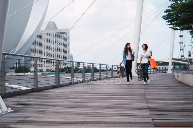 Молодые красивые азиатские женщины вместе в городе с сумками — стоковое фото