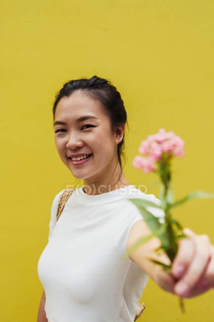 Молодий привабливою азіатські жінки холдингу рожева квітка, жовтий фон — стокове фото