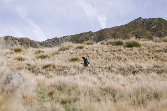 Young man running up Mountain Cook National Park in New Zealand — Stock Photo