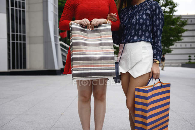 Cropped image of women at shopping with shopping bag — Stock Photo
