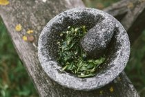 Stone pounder with fresh grinded herbs — Stock Photo