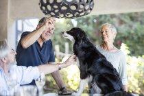 Mayores en terraza dando golosinas para perros - foto de stock