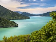 Parque Nacional de Marlborough Sounds — Fotografia de Stock