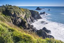 Cape Foulwind a Tauranga Bay — Foto stock