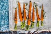Raw carrots and fresh rosemary — Stock Photo