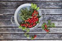 Tin bowl of rosehips — Stock Photo