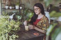Frau Pflanzen Kakteen — Stockfoto