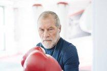 Senior man with boxing gloves — Stock Photo