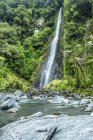 Thunder Creek Falls at Haast river — Stock Photo