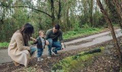 Семья прогулки в лесу — стоковое фото