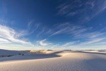 Ландшафт пустыни чихуахуа — стоковое фото
