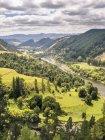 La rivière Whanganui entre collines verdoyantes — Photo de stock