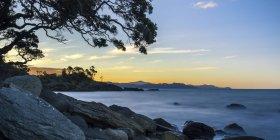 Nuova Zelanda, Coromandel Peninsula — Foto stock
