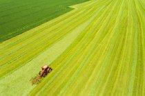 Vue aérienne de la faneuse foin champ — Photo de stock