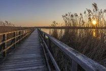 Wooden boardwalk at sunset — Stock Photo