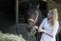 Woman feeding hay to horse — Stock Photo