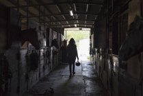 Жінка вигулює кінь стабільний — стокове фото