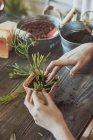 Donna piantare cactus — Foto stock