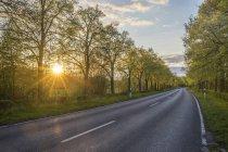 Пустая улица на закате — стоковое фото