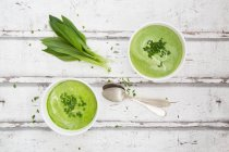 Две миски рамсонского супа — стоковое фото