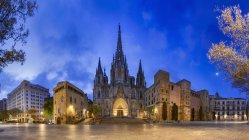 Cattedrale nel quartiere Barrio Gotico — Foto stock