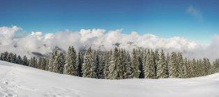 High route in winter, Vorarlberg — Stock Photo