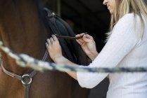 Woman applying saddle at horse back — Stock Photo