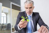 Geschäftsmann schaut sich Drohne an — Stockfoto