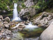 Wainui cai no Tasman National Park — Fotografia de Stock