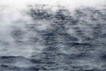 Vista do mar de Barents é uma área do Oceano Ártico — Fotografia de Stock
