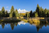 USA United States of America, Wyoming, Rocky Mountains, Teton Range, Grand Teton National Park, Snake River,  Nez Perce Peak, Middle Teton, Grand Teton, Mount Owen and Teewinot Mountain — Stock Photo