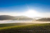 Germany, Baden-Wuerttemberg, Tauberbischofsheim, rural landscape with ground fog — Stock Photo