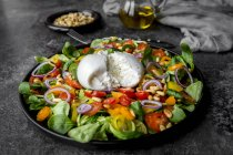 Plate of tomato salad with Burrata — Stock Photo