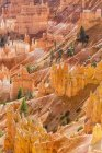 USA, United States of America, Utah, Bryce Canyon National Park, Colorado Plateau, Paunsaugunt Plateau, View from the Rim Trail to the Fel Pyramids or Hoodoos in the Amphitheater — Stock Photo
