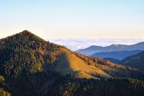 View of hill with trees during daytime, Hirschhoernlkopf, Alps, Hirschhoernlkopf — Stock Photo