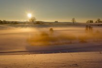 Germany, Gebrazhofen, sunrise over hazy winter landscape — Stock Photo