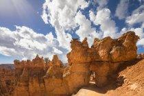 Соединенные Штаты Америки, Utah, Bryce Canyon National Park, hoodoos at Navajo Loop Trail — стоковое фото