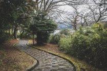 Japan, Hakone, hiking path at Lake Ashi — Stock Photo