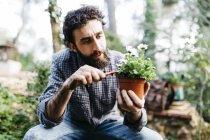Uomo piantare fiori — Foto stock