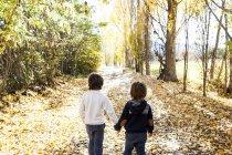 Задня кадроване портрет двох хлопчиків, ходьба на осінній дороги — стокове фото