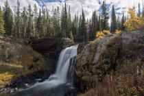 USA, Vereinigte Staaten von Amerika, Wyoming, Montana, Idaho, Yellowstone National park, Moose Falls — Stock Photo