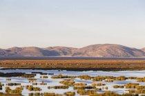 Вид горы на фоне и пруд на переднем плане в дневное время — стоковое фото