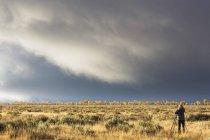 США, штат Вайоминг, скалистые горы, Национальный парк Гранд-Титон, женщина принимая картину ландшафта — стоковое фото