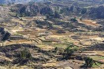 Peru, Anden, Chivay, Colca Tal, Colca Canyon malerischen Blick von oben — Stockfoto
