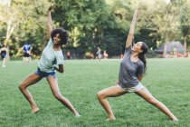 Two young women doing yoga exercise in a park — Stock Photo