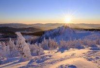 Allemagne, Bavière, Forêt bavaroise en hiver, Bodenmaiser Riegel au coucher du soleil — Photo de stock