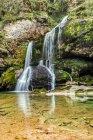 Словения, Юлианские Альпы, Бовец, Водопад Вирье в лесу — стоковое фото