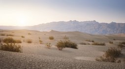 USA, California, Death Valley National Park, dunes at sunset — Stock Photo